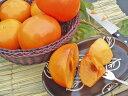 富有柿(一般品質・優品)約15Kg 50-70個入11月下旬頃発送