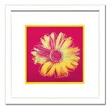 【アンディ・ウォーホル額付ポスター】デイジー1982年(フクシア色と黄色)(540×540×13mm)