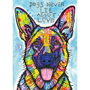 HEYE Puzzle・ヘイパズル 29732 Dean Russo : Dogs Never Lie 1000ピース