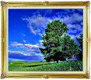 空と木と雲 F20サイズ 【油絵 直筆仕上げ絵画】【額縁付】 油彩 風景画 オリジナルインテリア絵画 風水画 インテリアアート絵画 20号