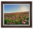 春の花々 F15サイズ 【油絵 直筆仕上げ】【額縁付】 油彩 風景画 オリジナルインテリア絵画 風水画 ブラウン額縁 812×690mm 送料無料