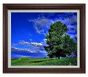 空と木と雲 F15サイズ 【油絵 直筆仕上げ】【額縁付】 油彩 風景画 オリジナルインテリア絵画 風水画 ブラウン額縁 812×690mm 送料無料