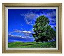 空と木と雲 F15サイズ 【油絵 直筆仕上げ】【額縁付】 油彩 風景画 オリジナルインテリア絵画 風水画 ゴールド額縁 812×690mm 送料無料