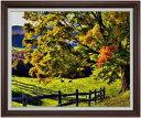 秋のはじまり F30サイズ 【油絵 直筆仕上げ】【額縁付】 油彩 風景画 オリジナルインテリア絵画 風水画 ブラウン額縁 1070×887mm 送料無料