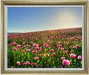 春の花々 F30サイズ 【油絵 直筆仕上げ】【額縁付】 油彩 風景画 オリジナルインテリア絵画 風水画 ゴールド額縁 1070×887mm 送料無料