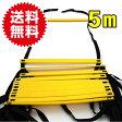 ラダー トレーニング アジリティ トレーニングラダー 5m 持ち運び用収納袋付き コグニサイズ 送料無料