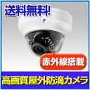 防犯カメラ 監視カメラ AHD220万画素 赤外線搭載屋外対応ドームカメラ(2.8〜12mm)【RD-CA212】