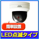 【ダミーカメラ】 防犯カメラ ダミー監視カメラ LED付ドーム型ダミーカメラ 防犯カメラ RD-2850