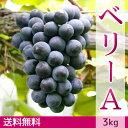 ベリーA ぶどう(3kg)【送料無料】
