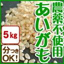 平成28年産 あいがも農法 お米 コシヒカリ(5kg)白米 玄米 農薬不使用 有機肥料 特別栽培 兵庫県産