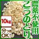 平成28年産 こうのとり米(10kg)白米 玄米 農薬不使用 コウノトリ育む農法 有機肥料 特別栽培 兵庫県産コシヒカリ