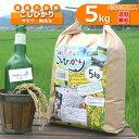 ショッピング無洗米 【新米】【定期購入】5kgx6回 令和元年産 玄米 白米 今ずり米 無洗米 農薬不使用 コシヒカリ