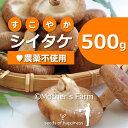 シイタケ しいたけ 椎茸 菌床栽培【500g】