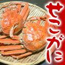 【解禁】訳ありせこがに セコガニ セコ蟹 せいこがに 10杯 兵庫県津居山産【送料無料】