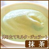 アイスクリーム 濃厚ミルクジェラート(抹茶)【楽ギフのし】