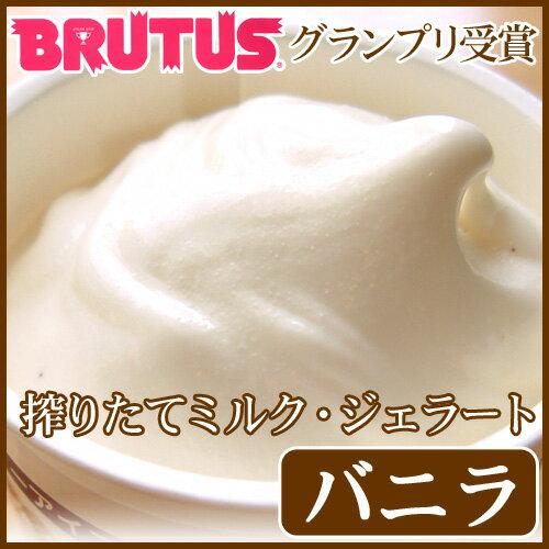 アイスクリーム 濃厚ミルクジェラート(バニラ)