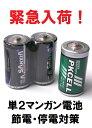 単2マンガン電池 2本セット 電池 単2 電池