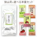 【スーパーSALE期間 10%OFF特価】 味わい狭山〜高級煎茶〜(100g)+羊かん