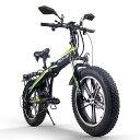 2020新春ヘルメットプレゼント!RICH BIT TOP016 電動ハイブリッドファットバイク スノーバイク「サンドバイク-PLUS」ホイール型 カラー4色 PL保険加入 20インチ