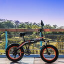初売り2020新春ヘルメットプレゼント!RICH BIT TOP016 電動ハイブリッドファットバイク スノーバイク「サンドバイク-PLUS」スポーク型 カラー2色 PL保険加入 20インチ ヘルメット