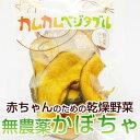 離乳食 カムカムベジタブル(かぼちゃ)離乳食 ベビーフード [9ヶ月頃〜]