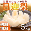 【送料無料】梨 日迎(ひむかえ)ご家庭用 5kg 特別栽培 ナシ 福岡県朝倉産の梨