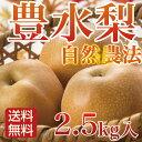梨 豊水 ご家庭用 2.5kg 特別栽培 微生物農法 福岡県朝倉産 なし ナシ 送料無料