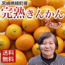 【送料無料】きんかん(金柑/キンカン) 2kg入 宮崎県綾町産