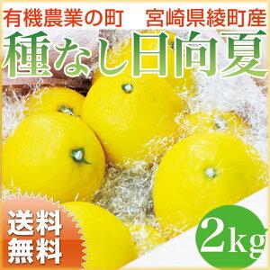 【送料無料】日向夏 種無し 宮崎産 2kg 有機肥料 ノーワックス 宮崎県綾町産の特別栽培