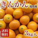 【送料無料】きんかん(金柑/キンカン) 3kg入 宮崎県綾町産