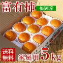 富有柿 家庭用 5kg 福岡産 ふゆ柿【送料無料】