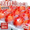 富有柿 冷蔵柿 5kg 福岡産 ふゆう柿【送料無料】