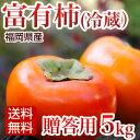 富有柿 冷蔵柿 贈答用 赤秀5kg 福岡産 ふゆう柿【送料無料】 ランキングお取り寄せ