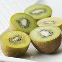 キウイフルーツ 1パック(4〜6個入) グリーンスムージー 福岡産
