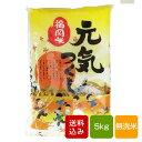 ショッピング無洗米 【新米】元気つくし 無洗米 5kg 一等米 福岡県産 令和元年産 送料無料