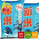 【新米】宮崎コシヒカリ 白米 10kg 令和元年産 こしひか...