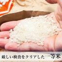 もち米 無洗米 餅米 九州産 米 2.5kg 小分け もち米無洗米洗わなくていい無洗米は、無洗米のお店「米穀館」におまかせください!