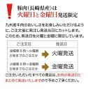 長崎県産 小羽いりこ 500g(業務用)
