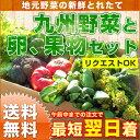 【送料無料】九州野菜セット & たまご 10個付 & 旬のくだもの付きのお得な野菜セット。九州の野菜のみ
