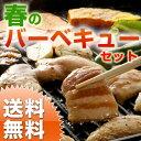 【送料無料】バーベキュー野菜セット  九州野菜とお肉3種類入りのお得セット