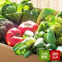 野菜セット 10品 無農薬 減農薬野菜中心 おまかせ詰め合わせ 九州産 西日本 野菜