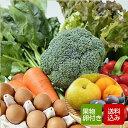 【送料無料】野菜セット & たまご 10個付 & 旬のくだも...