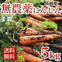 有機にんじん 無農薬 5kg にんじん JAS認定 【送料無料】