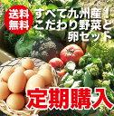 【定期購入】【送料無料】野菜セット たまご10個付きご希望の日にお届けします! 【送料無料_spsp1304】【半額以下_sp…