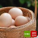 卵 60個入 (割れ保証一割(6個)含む) タマゴ 福岡産