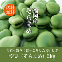 【送料無料】そら豆 2kg そらまめ ソラマメ 蚕豆 春の味覚 空豆