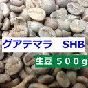 ショッピングコーヒー豆 【あすつく】生豆 グアテマラ SHB 500g| アサヒコーヒー 自家焙煎 旭コーヒー スペシャルティコーヒ−