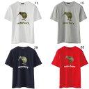 カンタベリー 【CANTERBURY】S/STシャツ 2016SS 特価セール