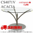 Calligarisカリガリス 正規代理店 ACACIA (カリガリス アカシア) CS/4071-V GTRクリア