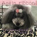 2色ボンボンリボン again ribbon アゲインリボン 犬用リボン 犬用アクセサリー